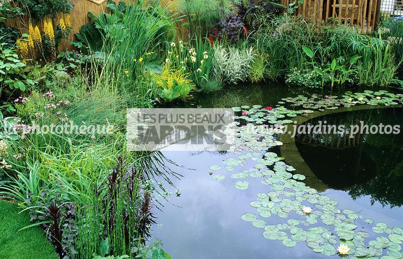 la phototh que les plus beaux jardins bassin de jardin piscine naturelle nymphaea. Black Bedroom Furniture Sets. Home Design Ideas