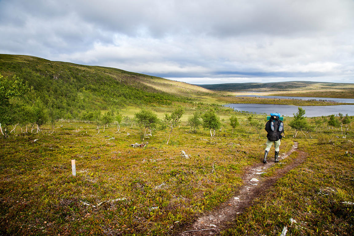 Hiker in Kaldoaivi Wilderness Area