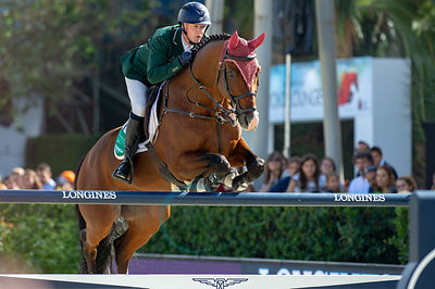 CSIO BARCELONA -  FEI NATIONS CUP FINAL photos