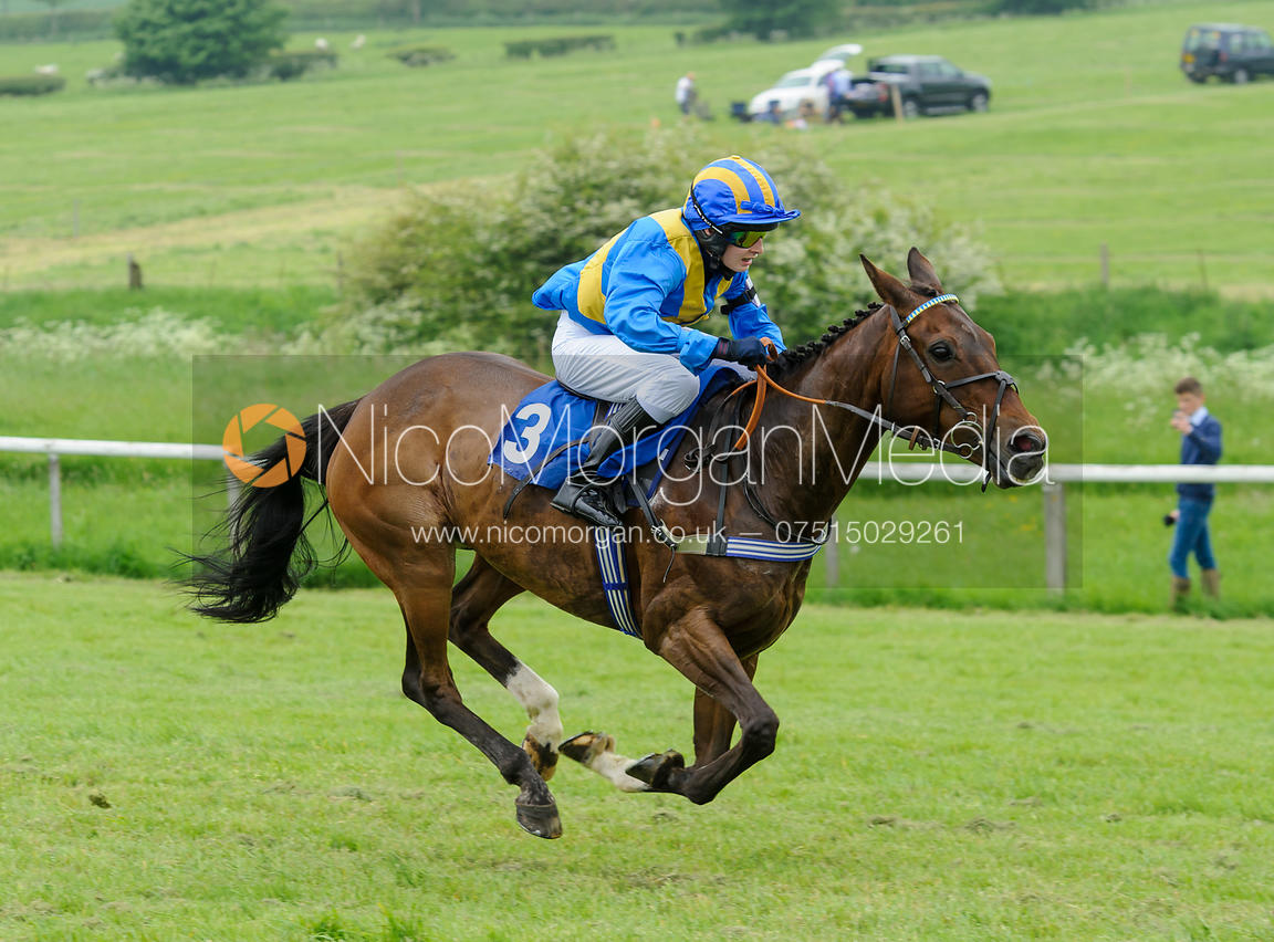 Race 1 - MSSH Open Pony Race - Pony Racing, Garthorpe 4/6