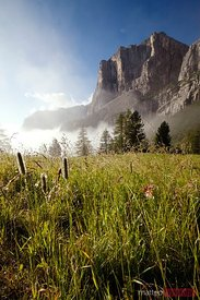 Sunrise over the meadows in the italian alps Dolomites Italy