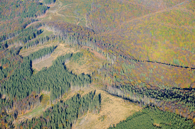 Aerial view of deforestation in the ?ureanu Mountains.  Carpathians, Romania. October, 2014.