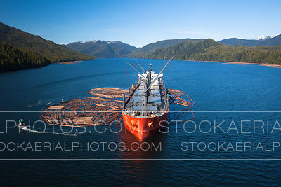 Cargo Ship with Raw Logs