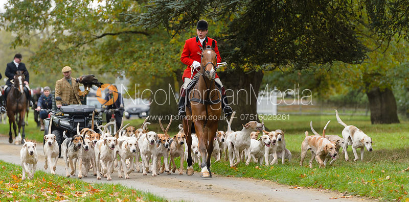 Fitzwilliam Hunt Opening Meet 1/11 photos