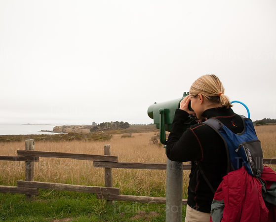 rear view of a woman looking through telescope at Ano Nuevo State Reserve, California