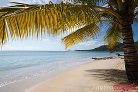 St Anne tropical beach Martinique Caribbean