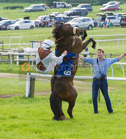 AGA 148cms Conditions Final - Pony Racing - MSSH Point to Point 2014