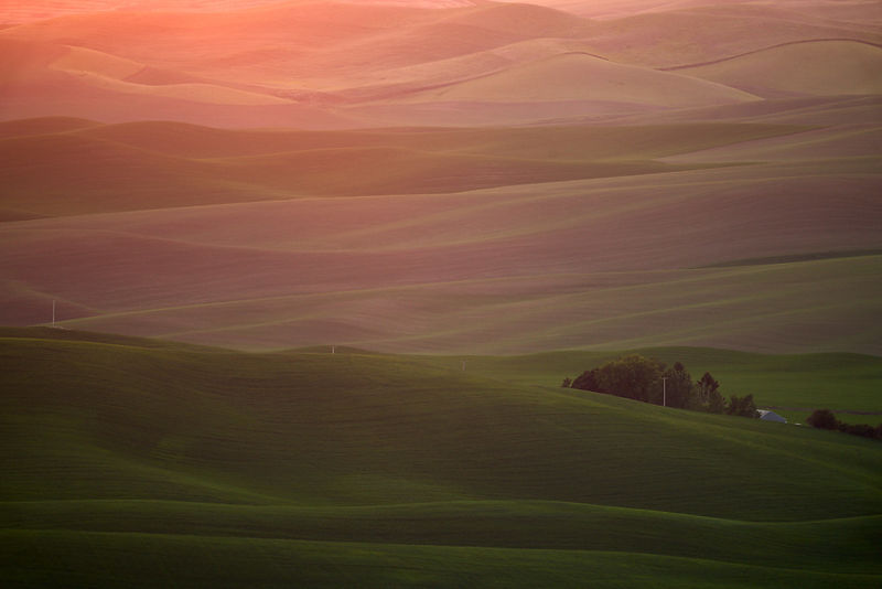 Last Light on the Palouse