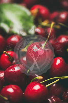 Fresh sweet cherry texture, wallpaper and background, close-up