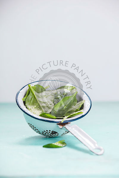 Spinach. Fresh organic spinach leaves in metal colander. Diet, dieting concept. Vegan food, healthy eating. Rustic style