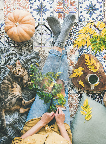 Autumn tea time with female and cat on tiled floor
