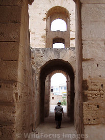 The inner galleries of the amphitheatre of Thysdrus, El Jem, Tunsia; Portrait
