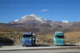 Borax mining trucks parked next to A-95 road, Guallatiri volcano in background, Las Vicuñas National Reserve, Region XV, Chile