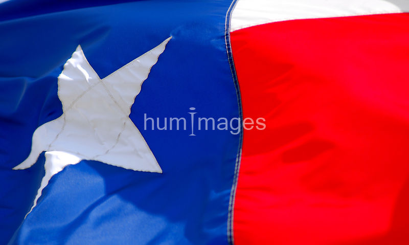 Large Texas flag (full frame)
