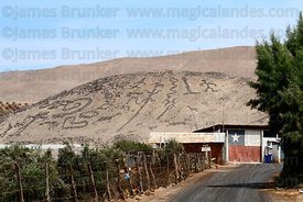 Geoglyphs at Cerro Sagrado , Azapa Valley , Region XV , Chile