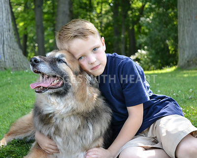 Boy Sitting in Park With Dog
