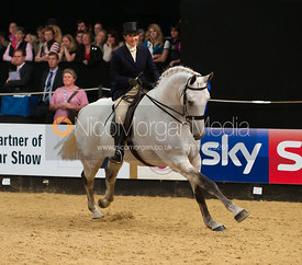 Jane Webber riding Silverstream II, Horse of the Year Show 2010