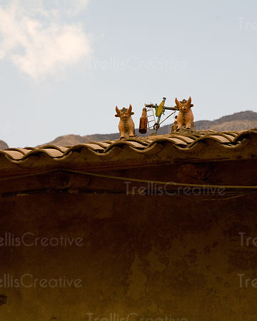 Homes throughout Cuzco and the Sacred Valley have animal and plant ornaments and holy water on the roofs as holy offerings for prosperity and safety