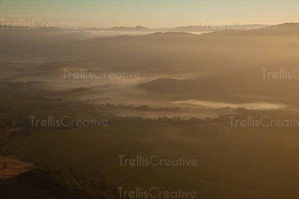Low morning fog blankets over vineyards of Yountville in Napa Valley