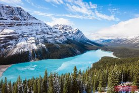 Peyto lake in autumn, Banff National Park, Canada