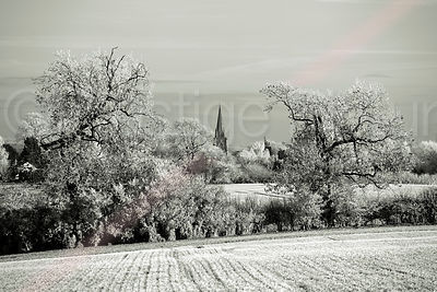 Frost Covered Fields with Trees and Village Church in Black & White