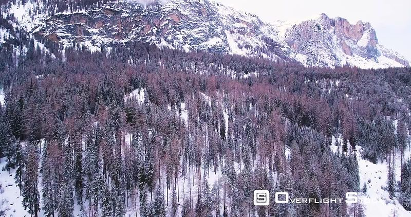 Aerial, beautiful woods under the snow in mountains, Italy