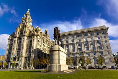 The Statue of Edward VII on Horseback standing Before the Royal Liver Building and the Cunard Building