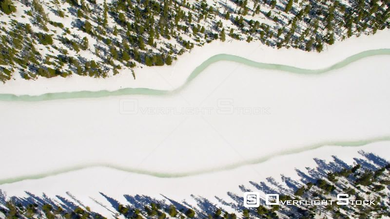 A frozen mountain lake sits in the dense lodgepole pine forests of Yellowstone National Park