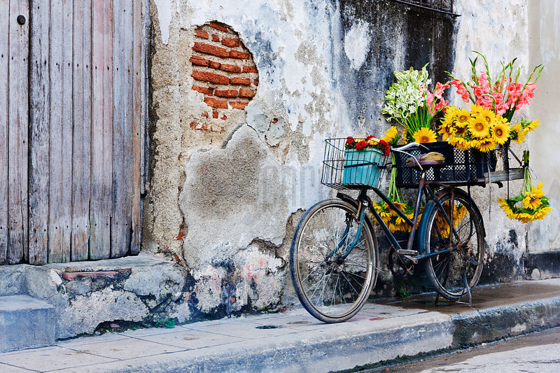 Flower Seller's Bicycle