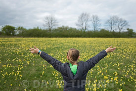 Young girl (Charlotte Tipling) in  meadow of Cowslips putting on a spectacular Easter display near Hunstanton North Norfolk