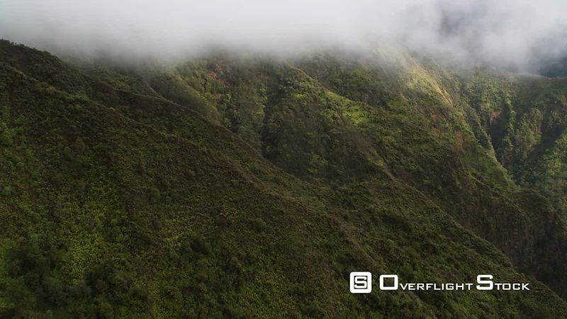 Close over tree-covered mountainside through rising mist, Hawaii.
