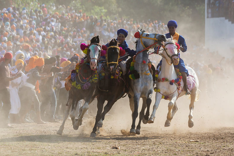 Nihang Sikh Warriors Shows their Riding Skills During the Horse Games at the Annual Holla Mohalla