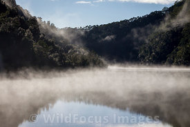 Morning mist and reflections along the very still Gordon river, Franklin - Gordon Wild Rivers National Park, Tasmania, Australia; Landscape