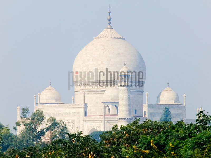 Domed Roofs of the Taj Mahal