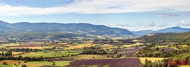Panoramic of valley with laveder fields, Provence, France