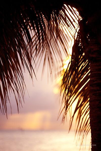 Photos Prints Key West Amp Florida Keys Photography