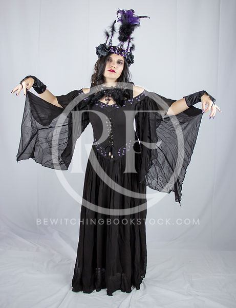 Sheena: Dark Fae Queen photos