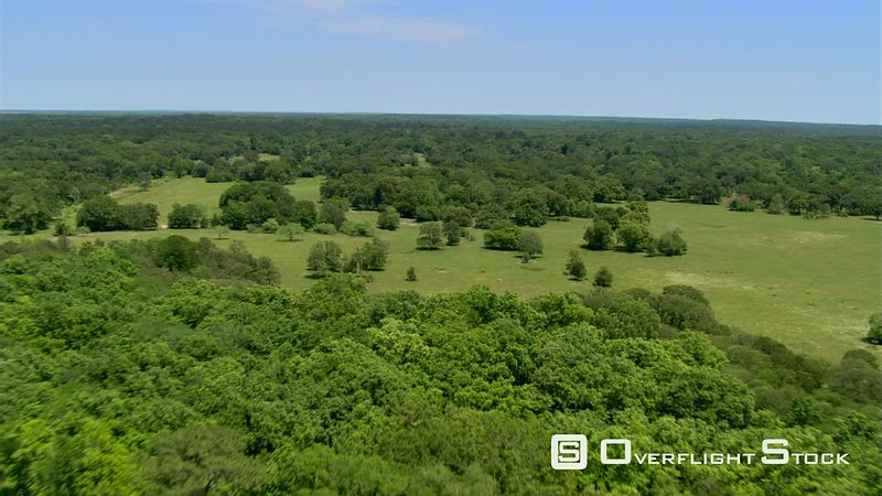 Flight over an oak savanna near Huntsville, Texas