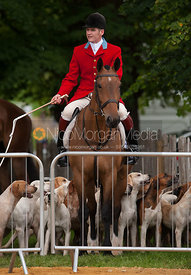 Ollie Finnegan - Parade of Hounds - Land Rover Burghley Horse Trials, 2nd September 2012.