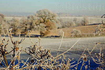 Beautiful, bright winters morning Across Fields