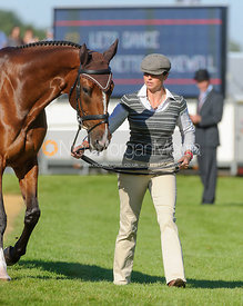 Jeanette Brakewell and LETS DANCE - The final trot up, Burghley Horse Trials 2013.