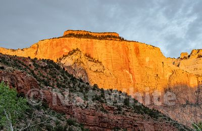 Zion_National_Park--Zion_NP_-3April_19_2018NAT_WHITE-April_19_2018-NAT_WHITE