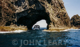 Hole in the Rock, Piercy Island, Bay of Islands, North Island, New Zealand.