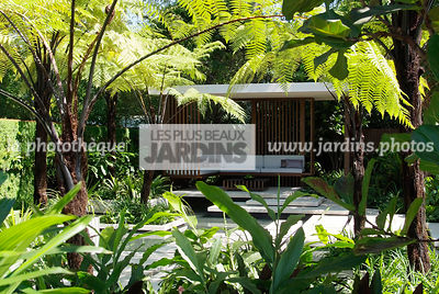 Asiatic garden, Contemporary furniture, Exotic garden, Garden construction, Garden furniture, Resting area, Tropical garden, Malaysian garden, Tree Fern