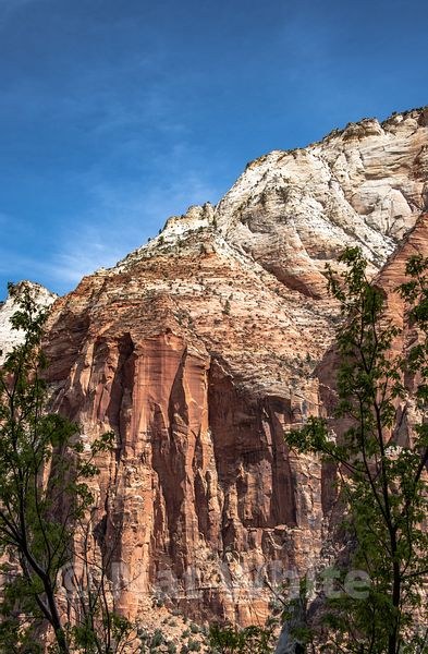 Zion_National_Park--Zion_NP_-48April_18_2018-April_18_2018-