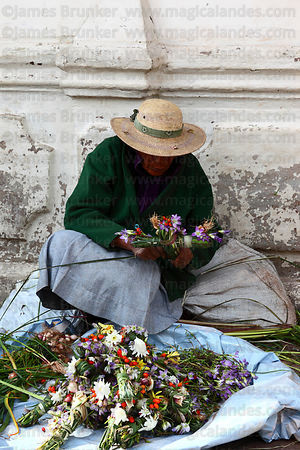 Old lady making and selling crosses made out of local plants for Easter in market , Cusco , Peru