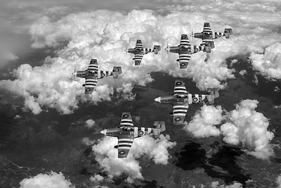 D-Day Mustangs black and white version