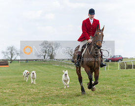 Ed Winnington and Quorn foxhounds- The Quorn at Garthorpe 21st April 2013.