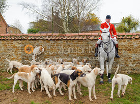 Andrew Osborne MFH and the Cottesmore hounds - The Cottesmore Hunt at Tilton on the Hill, 9-11-13