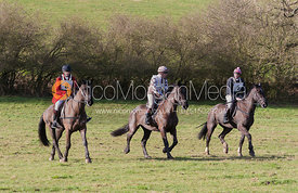 The Household Cavalry Ride 2013